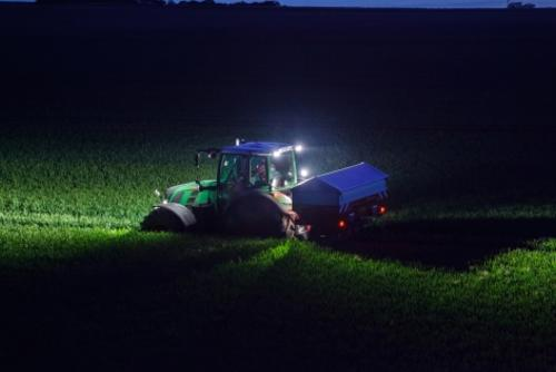 Spreading at night